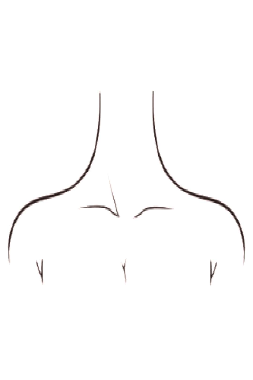How to draw neck / collar bones - How to draw neck / collar bones - ... - How to draw neck / colla